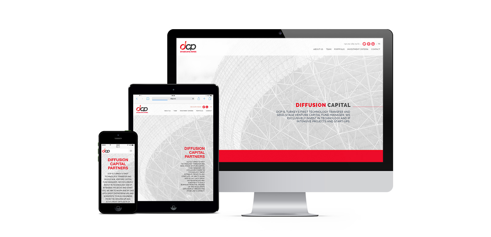 DCP Diffusion Capital Partners Website 1