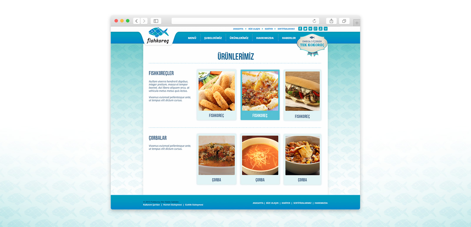 Fishkoreç Website 2