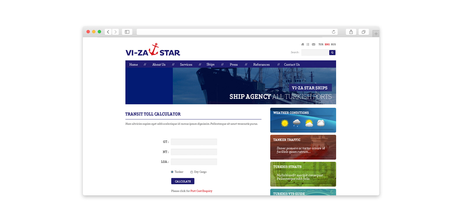 VIZA  Star Website 2