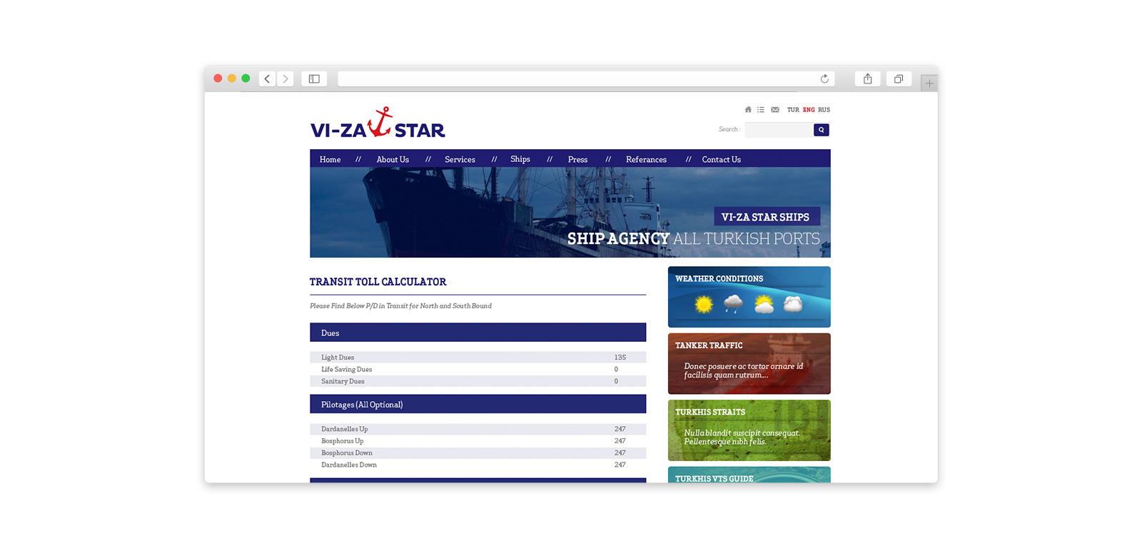 VIZA  Star Website 3